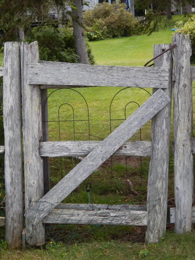 Gateless Gate